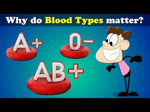 Why do Blood Types matter? | #aumsum
