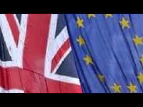 EU citizens not eligible for referendum vote, says No 10