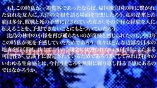 大岡昇平氏が1985年に自作「野火」を語った記録。全3回の第1回目のア...