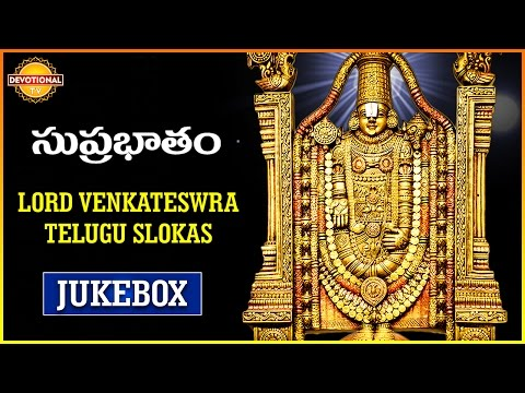 Lord Balaji Telugu Devotional Songs Jukebox | Venkateswara Swamy Suprabhatam | Devotional TV