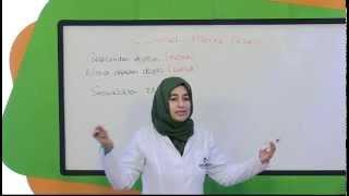 İlköğretim 4. Sınıf Türkçe Eğitim Seti Gerçek Anlam Mecaz Anlam