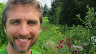 3 Organic Gardening Tips (Some Of Them You Haven't Heard Before)