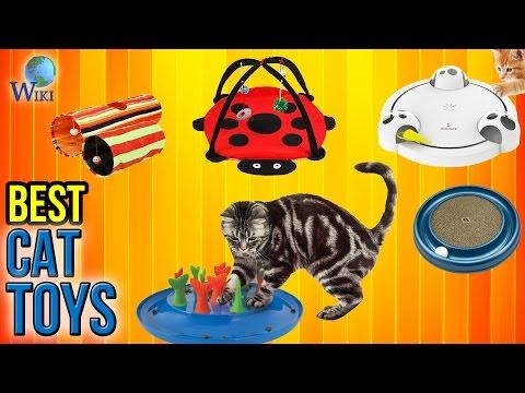 8 Best Cat Toys 2017