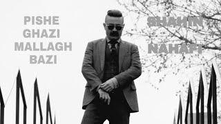 Sahin Najafi - Pishe Ghazi Mallagh Bazi ||  شاهین نجفی - پیشه قاضی ملق بازی