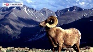 ГОРЫ ТАДЖИКИСТАНА | Mountains of Tajikistan