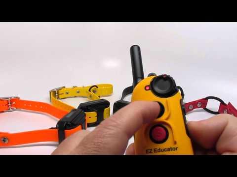 E-Collar Technologies EZ-Educator EZ-904 4-Dog training collar