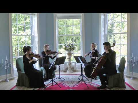 Send My Love (Adele) Wedding String Quartet