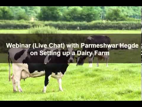 Setting up a Dairy Farm - Parmeshwar Hegde - www.agricultureinformation.com