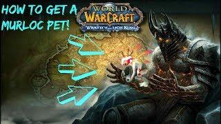 WOW~How to get terky the murloc secret battle pet