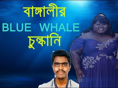BLUE WHALE ROASTING | বাঙ্গালীর ব্ল হোয়েল চুল্কানি  | new fun video  😀