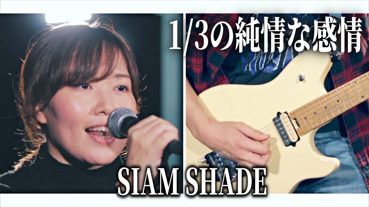 【るろうに剣心】1/3の純情な感情/SIAMSHADE【covered by K.S.B STUDIO】(Rurouni Kenshin 1/3 junjou na kanjou)