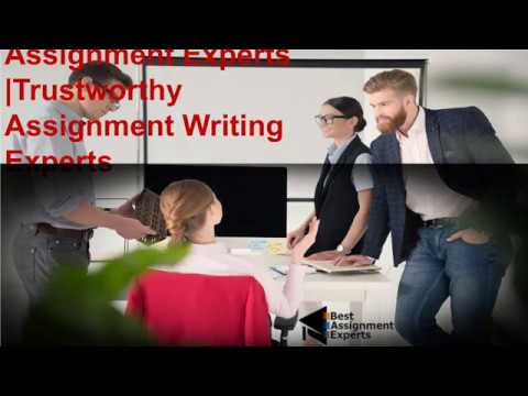 Assignment writing expert