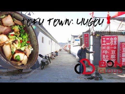 Tofu town: Liugou