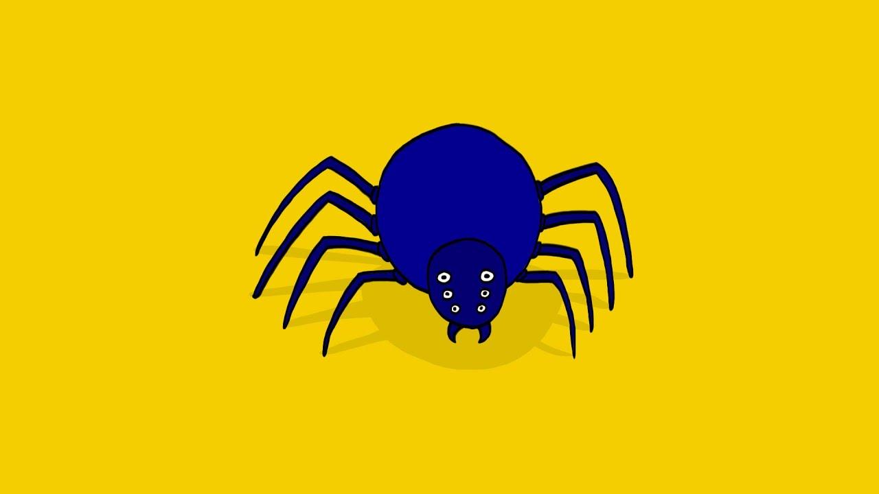 Comment dessiner une araign e youtube - Araignee dessin ...