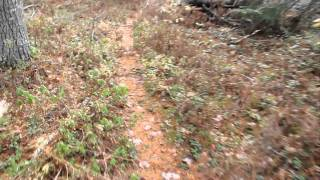 Hiking Trails of Nova Scotia - Kejimkujik National Park: West River