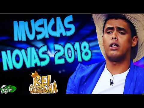 REI DA CACIMBINHA 2018 - RESSACA DO CARAI 2018 - MÚSICAS NOVAS - COMPLETO
