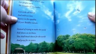 """Reading """"A Ray of Light"""" by R.Okawa"""