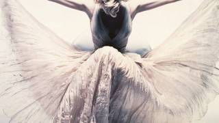 Nick Knight - Natural History Museum & Victoria and Albert Museum