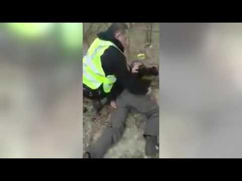 Полиция Украины арестовала крупного контрабандиста леса