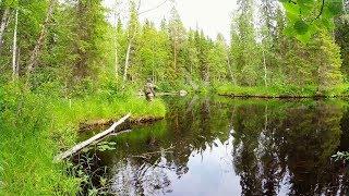 Рыбалка на таёжной реке. Хороший улов. Трофей взят. Щука взбесилась