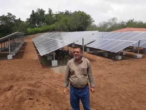 Sunpower commercial plant work