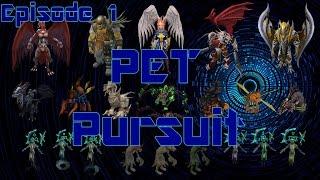 Pet pursuit episode 1-Runescape boss pets-chick