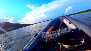 ЗАКИНУЛ ПУЧОК ЧЕРВЯ НОЧЬЮ И ОН КЛЮНУЛ рыбалка с ночевкой