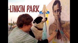 Слепая собака на прогулке. Увидели портрет Честера Беннингтона из Линкин парк.