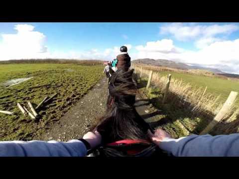 Pony Trekking at Bwlchgwyn Farm.