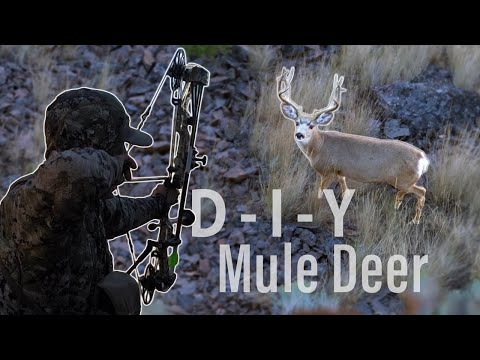 Bow Hunting Open Country Bucks – Self-filmed DIY Mule Deer (Eastmans')