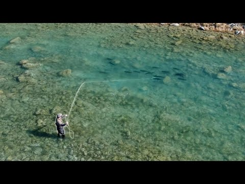 Fly Fishing For The BIGGEST TROUT In The World!