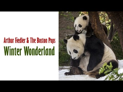 "Arthur Fiedler & The Boston Pops  ""Winter Wonderland"""