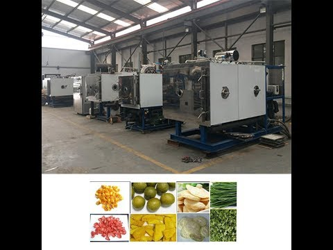 Industrial Fruit, Vegetable and Food Freeze Dryer  info@teficbio.com