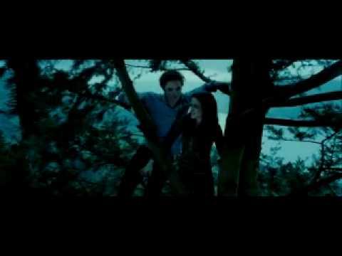 Twilight - Spotlight