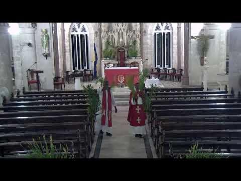 Holy Mass- Palm Sunday Vigil