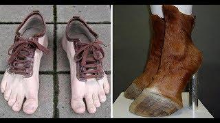 Обувь для собак. Плюсы и минусы.