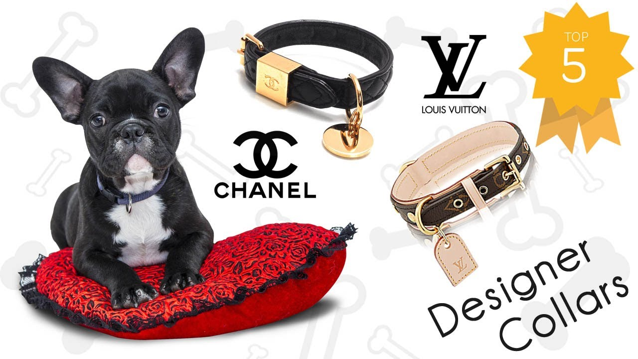 Luxury Designer Dog Collars and Accessories