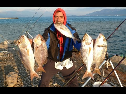 Правила рыбалки в греции