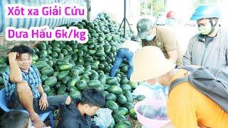 Giải cứu Dưa hấu đổ đống trên vỉa hè Sài Gòn 6K/kg | Saigon Travel