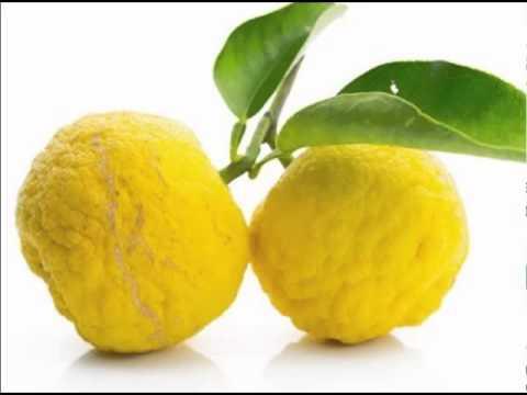 Health Benefits Of Yuzu Fruit