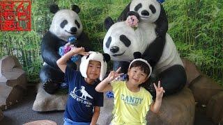 上野動物園であそぶせんももあい Ueno Zoo thumbnail