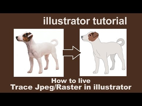 Illustrator Tutorials - live trace by converting JPEG/Raster to Vector thumbnail