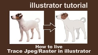 Illustrator Tutorials - live trace by converting JPEG/Raster to Vector