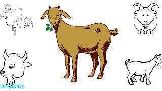 How to Draw Goat for Kids Easy | Learn to Draw Goat