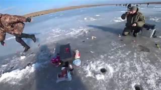 Хитрая зимняя ПЛОТВА и крупный ПЕСКАРЬ Зимняя рыбалка 2018