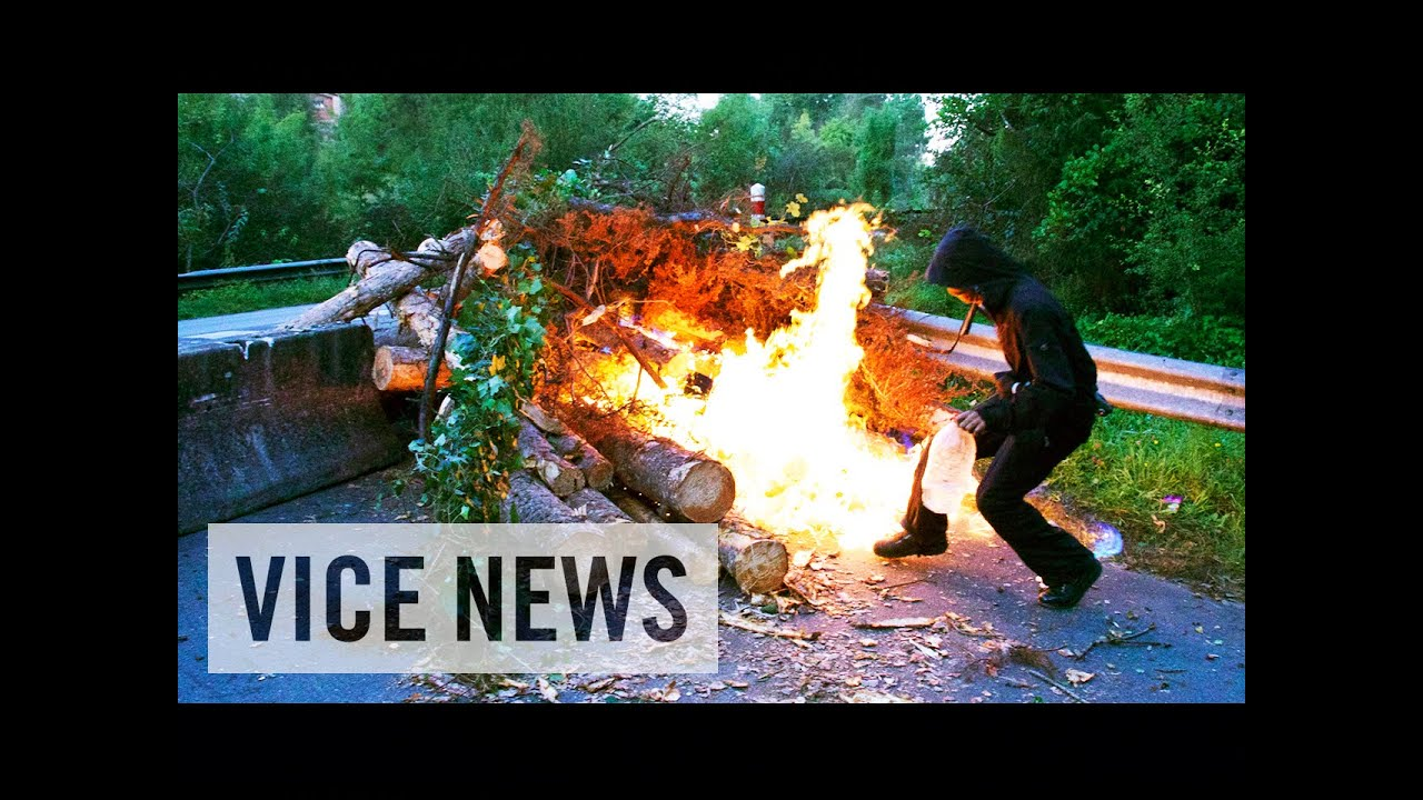 Militant French Eco-Activists Protest Deforestation: Fight for the Forest
