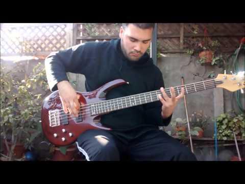 Natiruts - Deixa o menino jogar Cover bass