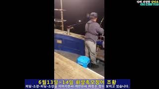 강민호 화살촉오징어 6…