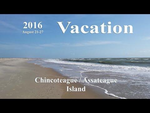 Chincoteague / Assateague Island Vacation August 2016