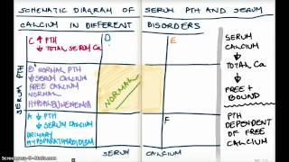 Different Disorders of PTH and Serum Calcium  Diagram